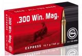 Geco 7,62х66 (.300 Win. Mag.) TM Express (10,7 гр.)