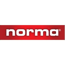 Norma 6,16*51 (.243 Win.) SP (6.5 гр.)
